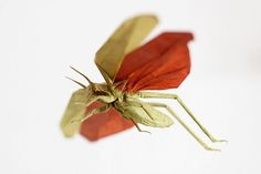 FLYING LOCUST (ORIGAMI) by MABONA ORIGAMI