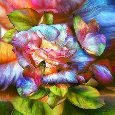 Carol Cavalaris - Rainbow Rose And Butterflies