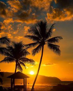 Tonight's Sunset  #hawaii #paradise  #aloha #sunset #kaenapoint #shoots #clouds #ocean #clarklittle