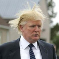 Donald Trump, another bad hair day