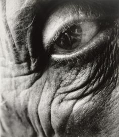 View Jean Arp, 1960 by Bill Brandt on artnet. Browse upcoming and past auction lots by Bill Brandt. Texture Photography, Portrait Photography, Body Photography, Portrait Images, Man Ray, Bill Brandt Photography, Hans Arp, Abstract Portrait, Belleza Natural