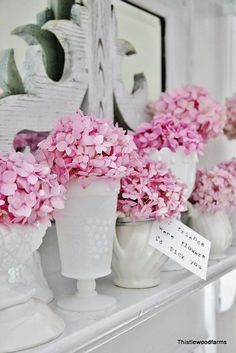 """""""How to Make Your Hydrangeas Bloom Coffee grounds. That simple. And maybe a used tea bag or two. My hydrangea bush doesn't bloom either! Hortensia Hydrangea, Hydrangea Bloom, Hydrangea Flower, Pink Hydrangea Wedding, Fresh Flowers, Pretty In Pink, Beautiful Flowers, Pink Flowers, Bloom Coffee"""