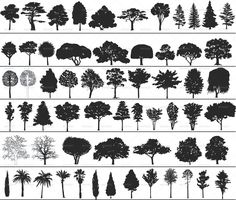 Vector Trees - GraphicRiver Previewer