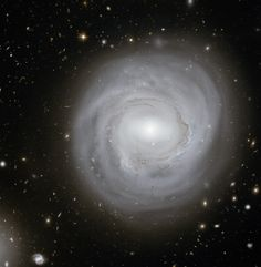 This image taken with the NASA/ESA Hubble Space Telescope shows the spiral galaxy NGC 4921 along with a spectacular backdrop of more distant galaxies. NGC 4921 is one of over 1000 identified galaxies in the Coma (Abell cluster. Cosmos, Hubble Space Telescope, Space And Astronomy, Telescope Images, Astronomy Crafts, Astronomy Quotes, Astronomy Tattoo, Astronomy Stars, Astronomy Pictures