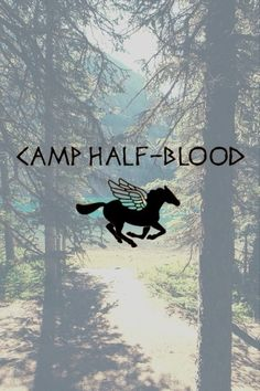 30 days of percy jackson: Day 1: camp half blood all the way