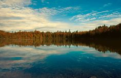 Canadian lake northern ontario boreal forest woodland by bomobob, $30.00