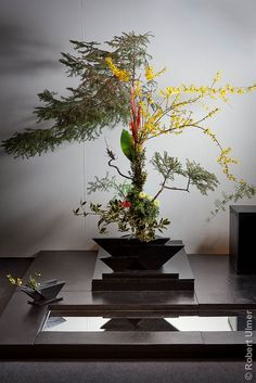 Ikebana (holy crap, that is probably THE most complex arrangement I've ever seen O.o)