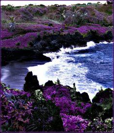 Black Sand Beach, Maui, Hawaii, USA