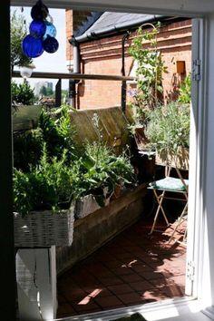 isabelle palmer of the balcony gardener