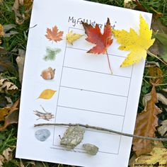 What better way to explore the changing environment than a fall nature hunt? Your kids will love investigating the natural world around them! Educational Activities For Kids, Outdoor Activities For Kids, Autumn Activities, Kindergarten Activities, Craft Activities, Educational Toys, Toddler Activities, Kids Learning, Toddler Toys
