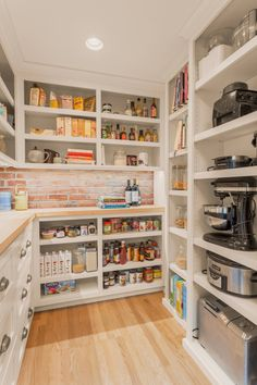 I like the shelves, with a larger counter for appliances... could use the granite we have and stick a fridge in the pantry.