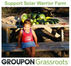 We are featured on Groupon!  Support the 2014 growing season at Solar Warrior Farm with a donation to the campaign: http://www.groupon.com/deals/trees-water-people