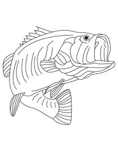 Jesus Fish Symbol Coloring Page Jesus Fish Symbol Coloring Page. Jesus Fish Symbol Coloring Page. Jesus the Miraculous Catch Of Fish Coloring Page in fish coloring page Jesus Fish Symbol Coloring Page Real Fish Coloring Pages at Getdrawings Of Jesus Fish Symbol Coloring Page Fish Coloring Page, Free Adult Coloring Pages, Free Coloring Sheets, Fairy Coloring, Flower Coloring Pages, Coloring Pages To Print, Free Printable Coloring Pages, Coloring Pages For Kids, Coloring Books