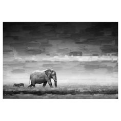 Parvez Taj Elephant Painting Print on Wrapped Canvas - PTA-10-C-45, PARV030-5