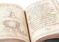 Eve's Spell Book - Current price: $475