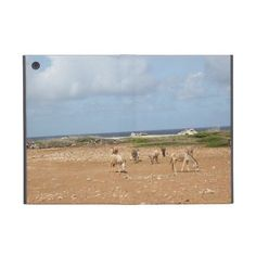 Wild feral Donkeys on Bonaire iPad Mini Case