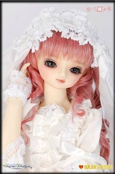 205.00$  Watch now - http://alipuo.worldwells.pw/go.php?t=32718741038 - 1/3 scale BJD pop SD pretty girl young maiden ROSE female figures doll DIY Model Toys gift.Not included Clothes,shoes,wig