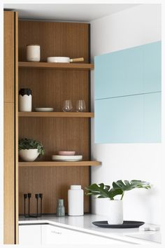 Blackbutt veneer shelving showcasing modernist homewares | cantileverinteriors.com