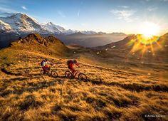 "Grandios! Via @flowvalley: ""#UphillFlow in the morning sun. Nice autumn colours in the Jungfrau Region. : @behappyu2"" #MTBswitzerland #mtb"
