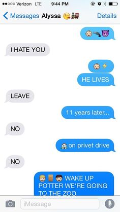 Harry Potter Told in 5 Hilarious Texts