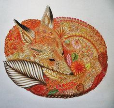 Animal Kingdom Coloring Book Fresh 17 Best Images About Animal Kingdom Millie Marotta Animal Kingdom, Curious Creatures, Animal Books, Colouring Techniques, Fox Art, Coloring Book Pages, Doodle Art, Pencil, Zootopia