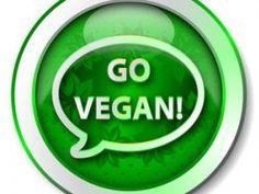 30 Tage vegan essen – ein persönliches Fazit (Teil IV)