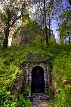 A door under the mountain upon which sits Castle Bran, the home of Vlad Tepes, better known as ... Dracula... . - [https://flic.kr/p/4NQryo] ¿Entrada?