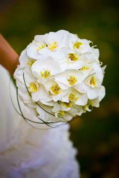 Milles Fleurs_ Orchideen_ Blütenkugel_ - 1