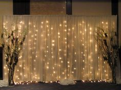 Where to rent CURTAIN, LIGHTED WHITE WIRE 16.5 in Edmonton Alberta