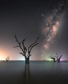 Astronomy Photography, Milky Way Photography, Star Photography, Aurora, Milky Way Photos, Milky Way Stars, Long Exposure Photos, Have A Great Night, Star Trails