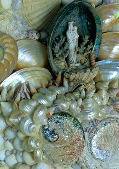 Mosaic Gallery - Shell Art