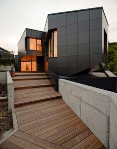 Modern home with dark metal cladding