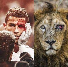 Cristiano Ronaldo Quotes, Cristano Ronaldo, Ronaldo Football, Real Madrid Football, Football Is Life, Football Memes, Ronaldo Junior, Ronaldo Wallpapers, Soccer Games