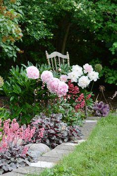 Ruiner, Landscape Design, Garden Design, Blossom Garden, Beautiful Bouquet Of Flowers, Backyard Play, Peonies Garden, Heuchera, Dream Garden