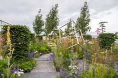 People's Choice Award and Silver Medal winning garden by Catherine Chenery Garden Design at RHS Hampton Court Palace Flower Show. The wonderful sculpture was kindly loaned to the charity to be used on the garden by Patrick Hurst.