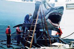Behind the scenes of Jaws dir: Steven Spielberg. the scenes spielberg Jaws Film, Jaws Movie, Jaws 2, Shark Film, Shark Jaws, Pet Sematary, Space Ghost, Thriller Film, Love Film