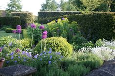 The garden is situated on the top of a hill and so hedges have been effective in allowing plants to establish