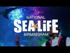 Our latest completed project - a cinema advert for The National Sea Life Centre.  Showing now for the next 10 weeks before Finding Nemo 3D. Contact us to see how we can make a video for you - www.cmavideo.co.uk or mitch@cmavideo.co.uk