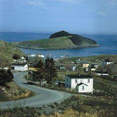 Visit quaint fishing villages along the coast of Newfoundland.