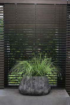 kitchen ideas – New Ideas Bamboo Shades, Family Bathroom, Living Room Inspiration, Home Decor Trends, Shutters, Home Interior Design, Blinds, Sweet Home, Curtains