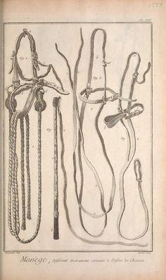 t.7 (1769) - Recueil de planches, sur les sciences, les arts libéraux, et les arts méchaniques :Bridals