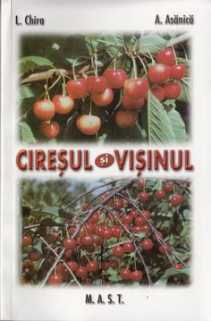 Altoirea pe intelesul tuturor - Editura M. Vegetables, Country, Sun, Author, Lawn, Rural Area, Veggie Food, Country Music, Vegetable Recipes