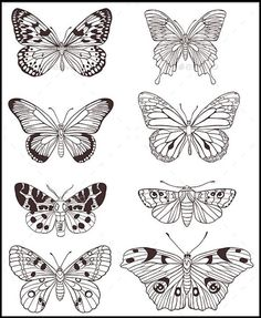 Butterfly Coloring Page for Adults Butterfly Coloring Page for Adults. butterfly Coloring Page for Adults. Coloring Pages butterfly Coloring Pages for Adults Gravity in butterfly coloring page Butterfly Coloring Page for Adults butterfly Coloring Pages and Other Free Printable Coloring Of Butterfly Coloring Page for Adults Butterfly Sketch, Small Butterfly Tattoo, Flower Tattoo Foot, Butterfly Art, Butterfly Symbolism, Butterfly Design, Monarch Butterfly, Butterfly Coloring Page, Flower Coloring Pages