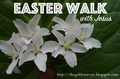 Family Home Evenings and more.: Take an Easter Walk with Jesus - Family Home Evenings and more….: Take an Easter Walk with Jesus - Celebration Church, Easter Celebration, Easter Scavenger Hunt, Holiday Activities For Kids, Preschool Ideas, Easter Buckets, Easter Story, Family Home Evening, Kids Church