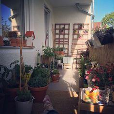 Balcony, chapter 1