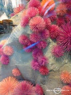 Sea urchins made from painted wooden skewers and styrofoam balls -   Under the…