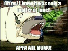 OH NO! #LOL #Appa #Momo #Sokka