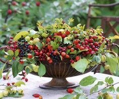 Decoration with small apples, nyper, dogwood and Crataegus monogyna