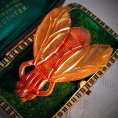 Vintage Scarce Art Deco LARGE Iridescent Lucite Celluloid Fly Insect Brooch  www.vintageclothin.com