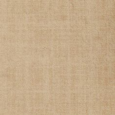 Stainmaster Natural Breeze Silver Leaf Saxony Carpet In The